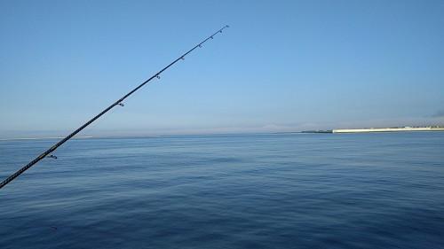 釧路 鮭釣り