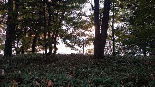 美しい屈斜路湖の朝