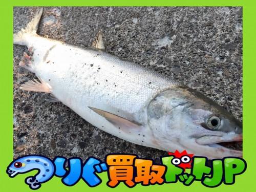 インプレ ダイワ モアザン AGS ディスタンスコマンダー【鮭釣 ウキルアー編】