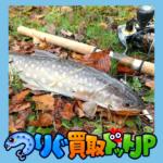 屈斜路湖から釧路川へ落ち葉とアメマス・ 南蛮亭さんザンタレの 2本立て!