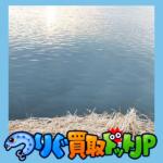2019 新釧路川 雨マス釣りの日記