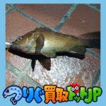 """<span class=""""title"""">釧路千代ノ浦マリンパーク ファミリーで釣り 夜釣りも</span>"""