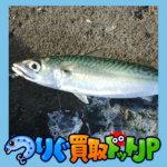 """<span class=""""title"""">釧路の9月はサバをルアーで釣る サバングを楽しむ。 釧路 サバ釣り編</span>"""